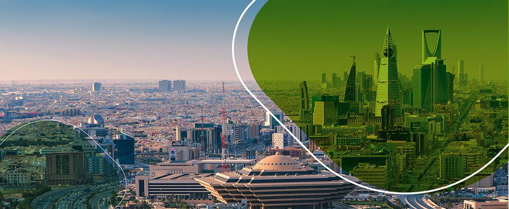 الخطة التنفيذية لحماية البيئة لمدينة الرياض